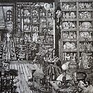 The Junk Shop by Fiona McDonald