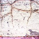 cracks in the wall by Lynne Prestebak