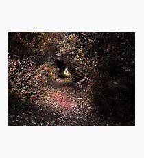 The Fantasy of Tweed Photographic Print