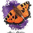 Aglais Urticae - handpainted watercolor by Wieskunde