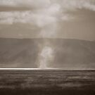 Salt Lakes, Ngorongoro Crater, 2009 by Sarah Mackie
