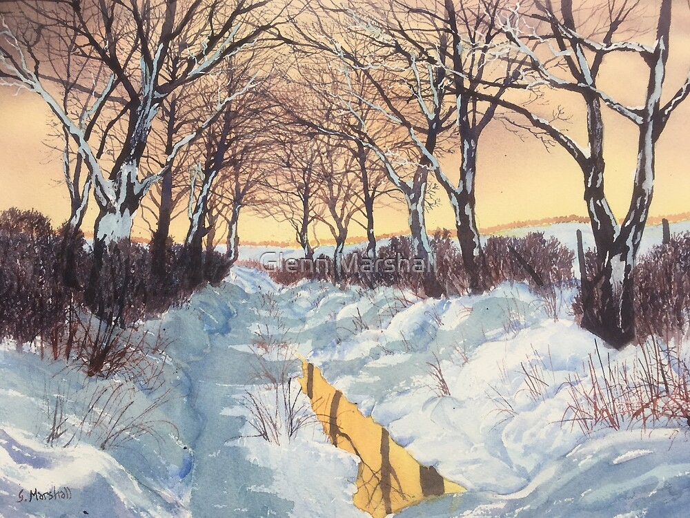Tunnel of Trees in Winter by Glenn Marshall
