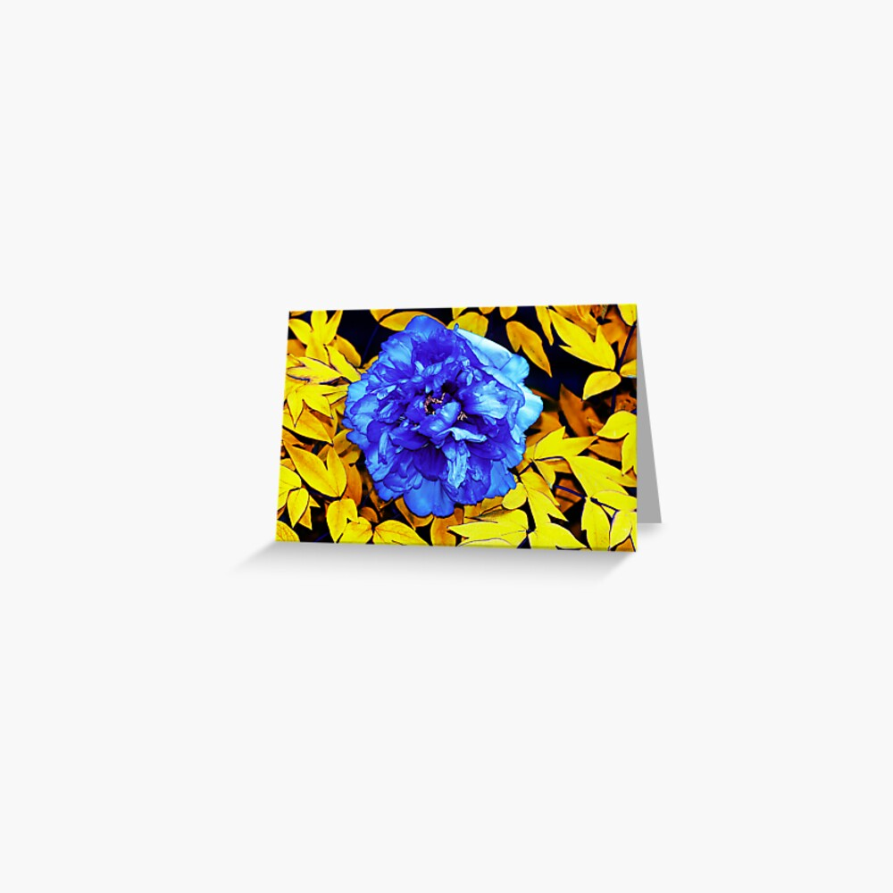 Flower Abstraction Greeting Card