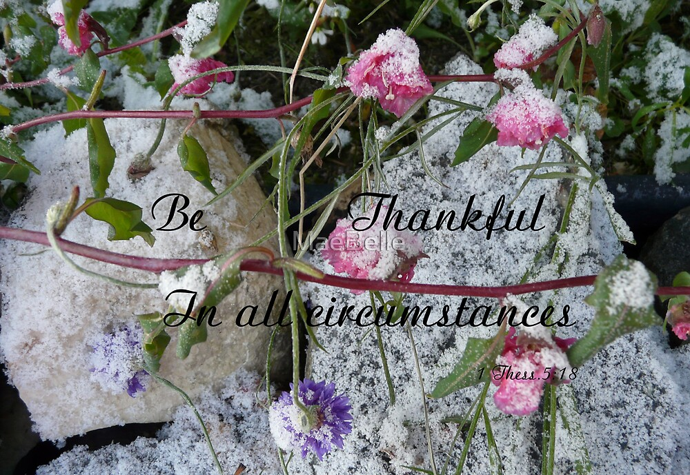 Be Thankful, 1 Thess,5:18 by MaeBelle