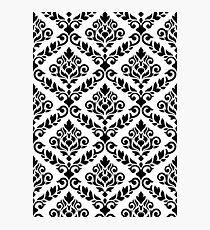 Prima Damask Pattern Black on White Photographic Print