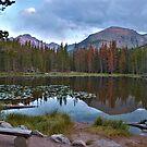 Rocky Mountain Reflection by Beth Mason
