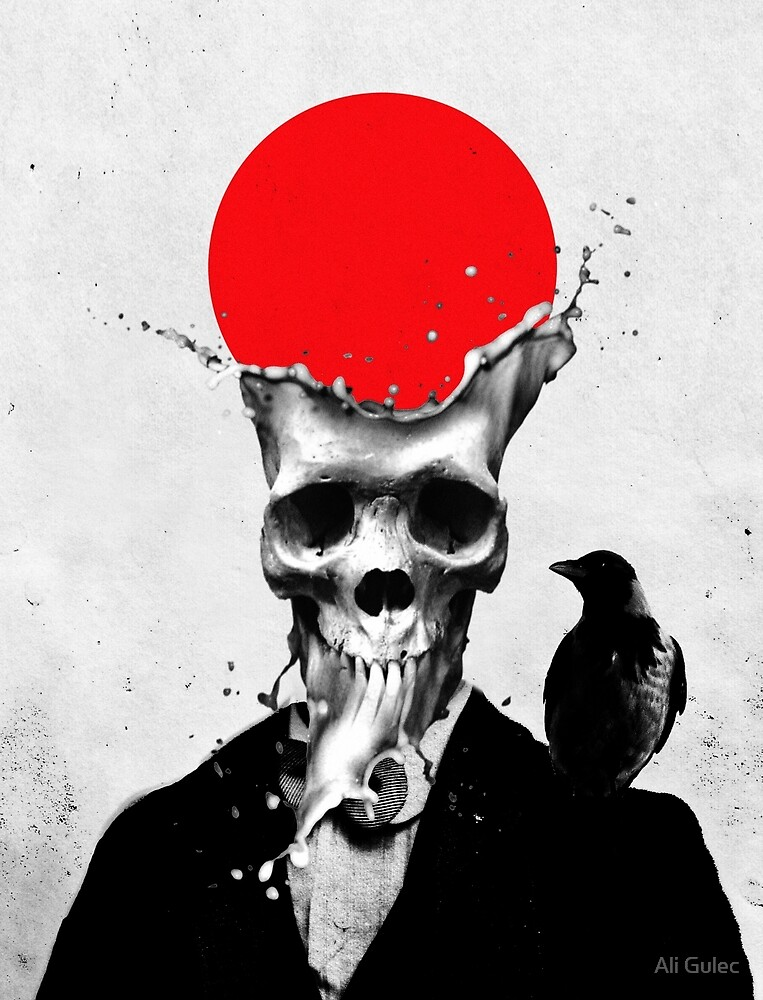 Splash Skull by Ali Gulec