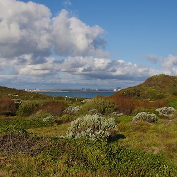 Point Peron Inland, WA by lezvee
