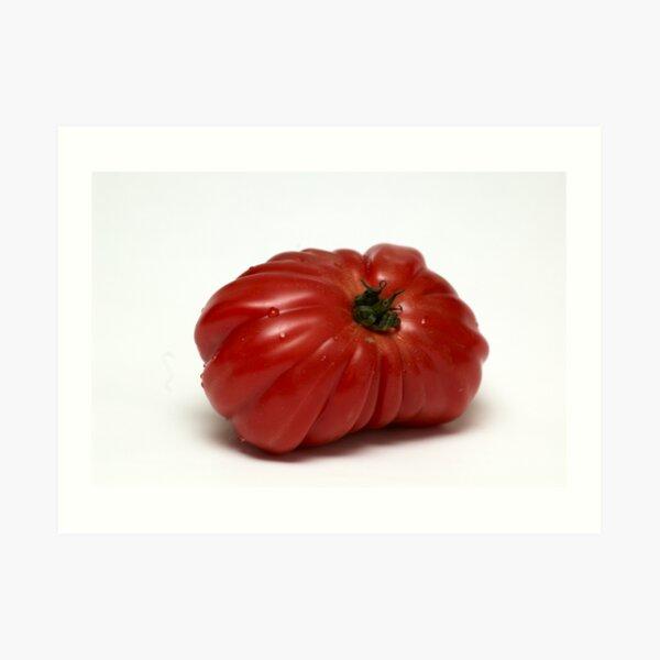 Montserrat  Tomato Art Print
