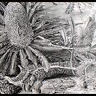 Fallen Banksia by picketty