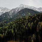 Alpine Fresh by badamg