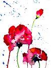 BAANTAL / Pollinate / Evolution #12 by ManzardCafe