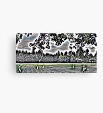 Catching Nature Canvas Print
