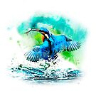 Kingfisher by GraphicAlchemy