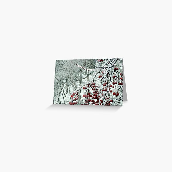 Frozen I by Isabelle Fraser Greeting Card