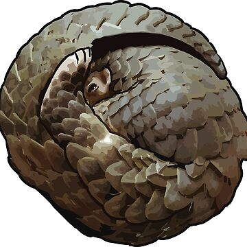 Pangolin by blueshore
