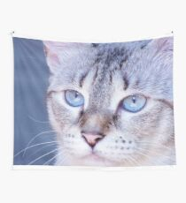 kitten blue yes Wall Tapestry