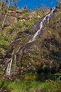 Clematis Falls Profile View by mspfoto