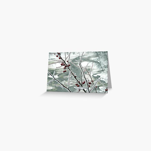 Frozen III by Isabelle Fraser Greeting Card