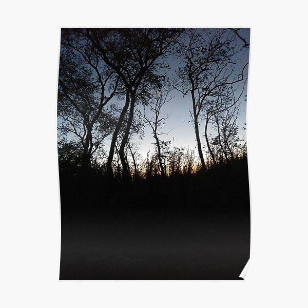 #tree #sunset #sky #trees #landscape #silhouette #winter #nature #sun #forest #sunrise #dusk #blue #morning #field #lake #fog #clouds #cloud #cold #night #evening #orange #mist #dark Poster