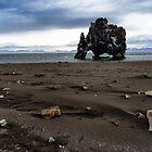 Hvitserkur Rock by mikewheels