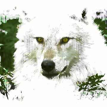 Mystical Wolf by NaturePrints