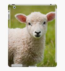 Baby Lamb iPad Case/Skin