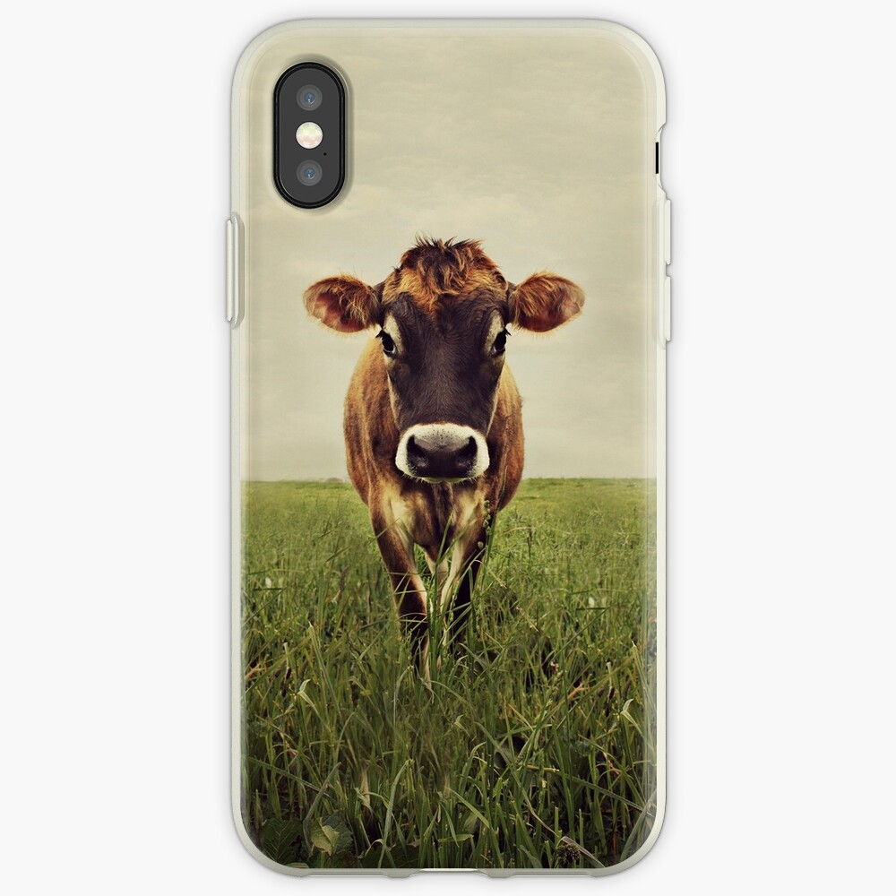 Stormy iPhone Cases & Covers
