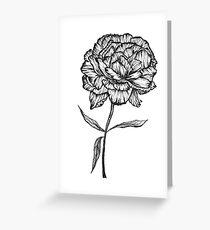 Peony Ink Sketch Greeting Card