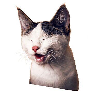 happy yawning cat by gleba420