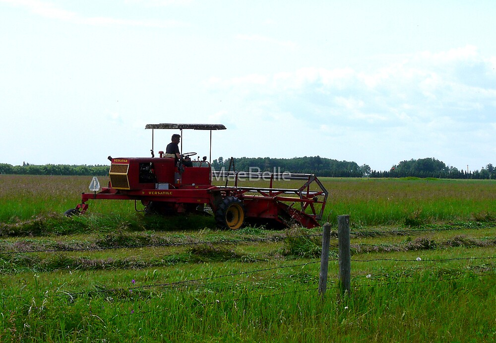 Swathing Hay by MaeBelle