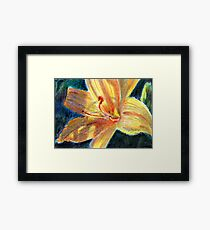 Lily Close Up Framed Print