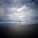 Cook Island by Sue Hammond