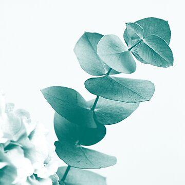 Green Eucalyptus #1 #foliage #decor #art  by anitabellajantz