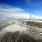 Snow Blizzards - II by Vivek Bakshi