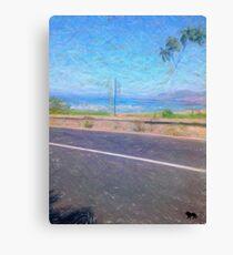 street photo Canvas Print