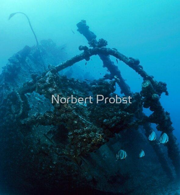 Ennerdale & Story by Norbert Probst