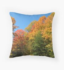 Bordering on Brilliant Fall Throw Pillow