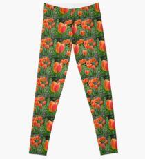 Two Tone Orange Tulips Leggings