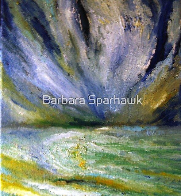 STORM ARRIVED by Barbara Sparhawk