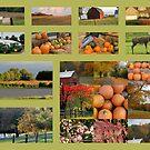 Autumn On The Farm by Linda Miller Gesualdo