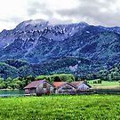 German Countryside IV (HDR) by Daidalos