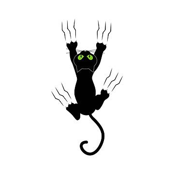 Hanging cat by bainermarket