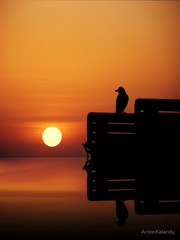 Looking at The Sun by AroonKalandy