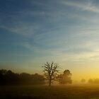 The Encroaching Dawn by berndt2