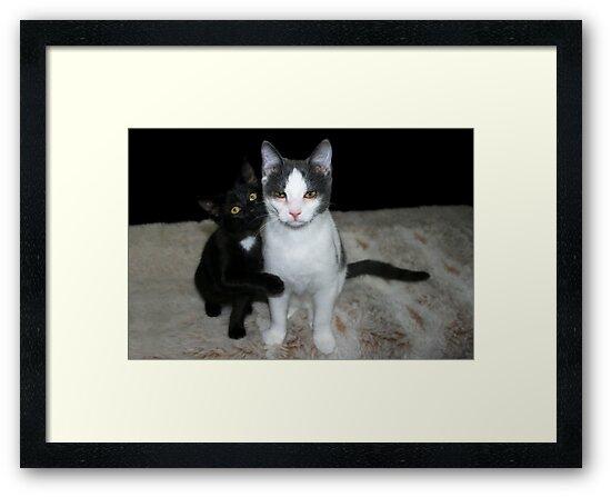 Tully & Winnie by Cheri Perry