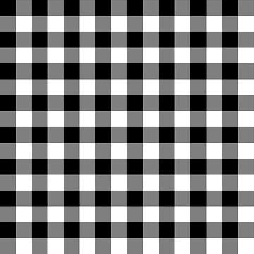 Rustic Black and White Buffalo Plaid Pattern by KokoloHG