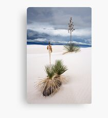 Raining Day at White Sands Metal Print