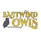 Eastwind Owls by FFSMedia
