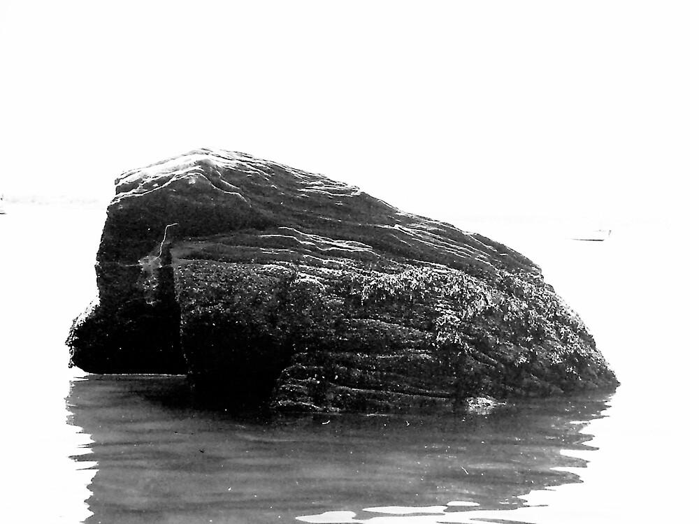 The Rock by gayskin